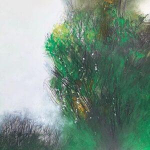 Green Tree - Hawthorne